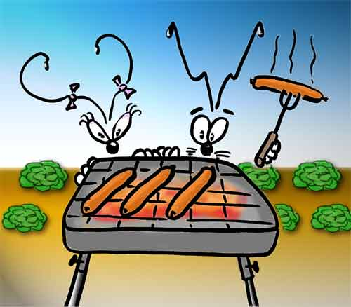 barbecue-umph